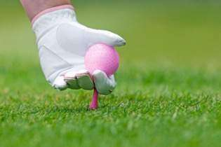 Sarasota National Golf